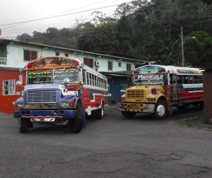 These buses were artistically painted, inside and out
