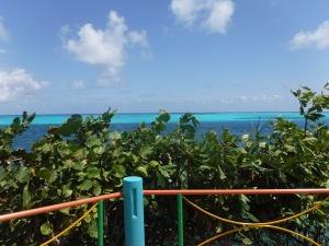 All over Providencia, you find bright benches and fences