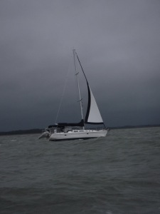 And here is our picture of Foreign Affair in those same crazy winds