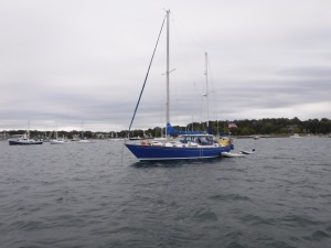 Another Whitby 42, Irish Rose, has a family of 4 aboard.  We enjoyed dinner aboard with them in Newport.