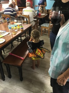 Adorable liveaboard butterfly at the potluck supper