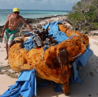 Homemade raft.  Wondering if the passengers survived
