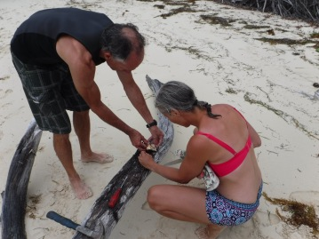 Teaching Sharon and Alex how to clean conch