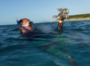 Lionfish are devouring the reef fish, so we will devour this tasty one!